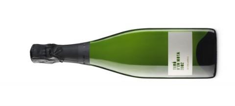 botella-600x273