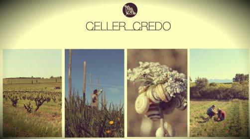 Celler_Credo2
