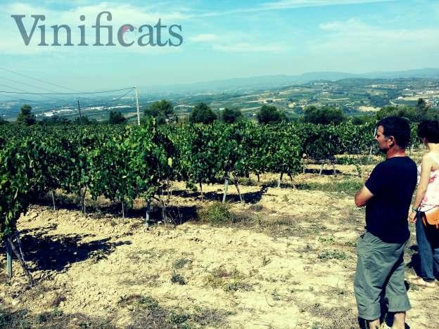 En Josep i la Núria, l'altre part de VinifiCATs, observant el petit camp d'experimentació d'Esteve i Gibert.